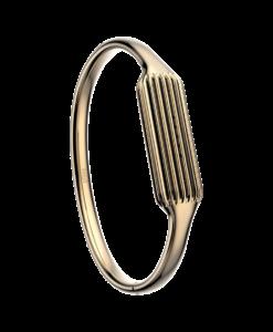 Fitbit Flex 2 rokassprādze